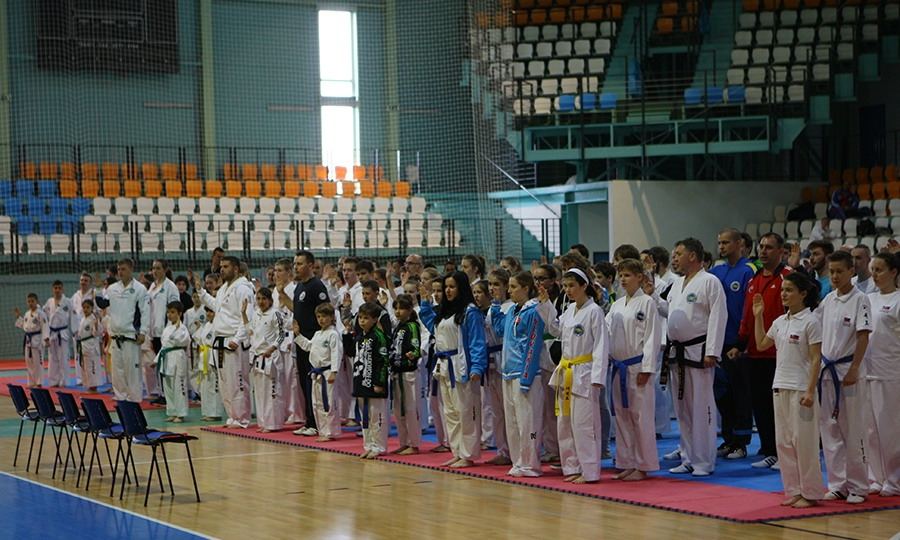 nitra cup 2015   3